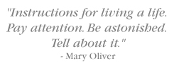Instructions for living a life. Pay attention. Be astonished. Tell about it. - Mary Oliver